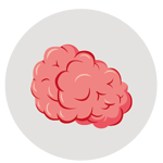 cerveau-white